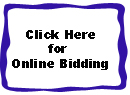 Dixie Auto Auction Online Bidding